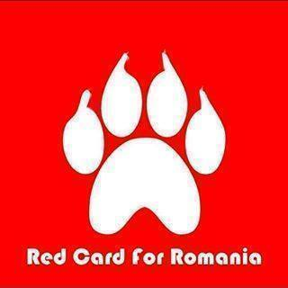 RED CARD FOR ROMANIA! ENTER HERE! https://www.facebook.com/groups/157755397763311/?fref=ts