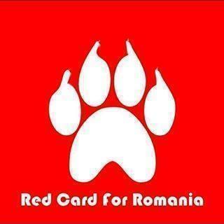 PROTEST!!!! SHAME ON YOU RPMANIA! SĂ-ŢI FIE RUŞINE ROMÂNIA!