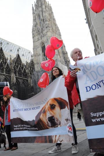 SetRatioSize540540-Solidarity_for_stray_dogs_Vienna_FOUR_PAWS_DSC_1647