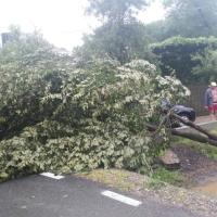 Furtuna afectează serios mai multe localităţi din Prahova (foto-video)