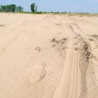 Sahara Olteniei, deșertul din sudul României